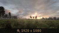 3510578.jpg