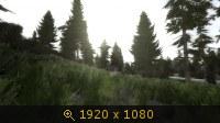 3510581.jpg