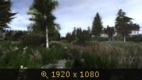 3510582.jpg