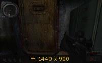 376486.jpg