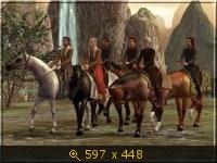 Лошади, и все, что с ними связано 532086