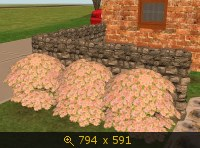 Все для сада 587890