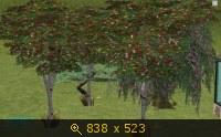 Все для сада 587920
