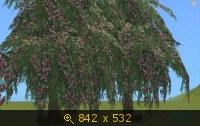 Все для сада 587924