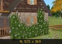 Все для сада - Страница 2 623468