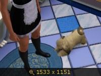Эти забавные животные 633693