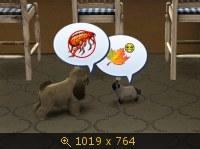 Эти забавные животные 634820
