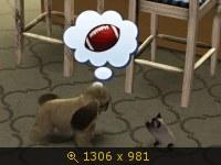 Эти забавные животные 634839