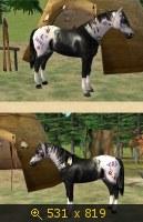 Лошади, и все, что с ними связано 647982