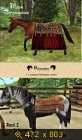 Лошади, и все, что с ними связано 648021