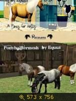 Лошади, и все, что с ними связано 648093