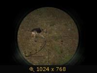 Зверушки 676977