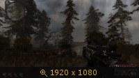 825363.jpg