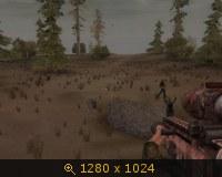 136257.jpg