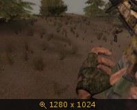 136261.jpg