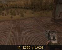 136309.jpg