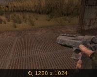 136310.jpg