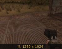 136311.jpg