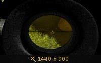 146630.jpg