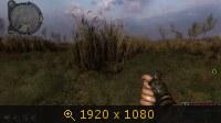 1665105.jpg