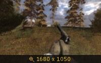 1763701.jpg