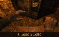 1819542.jpg