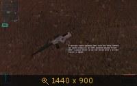 210566.jpg