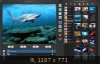 WebcamMax v7.7.7.6 Final & RePack by KpoJIuK (2013) Русский