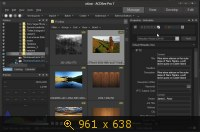ACDSee Pro 7 v7.0 Build 137 Final (2013) Русский