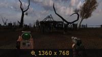 2304956.jpg