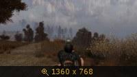 2304958.jpg