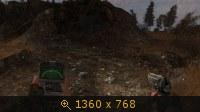 2304970.jpg
