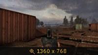2313177.jpg