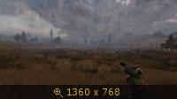 2315172.jpg
