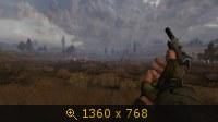 2315174.jpg