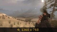 2322983.jpg