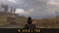 2337121.jpg