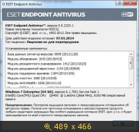 ESET Endpoint Antivirus 5.0.2225.1 (2013) Русский
