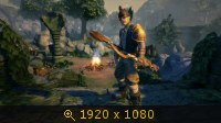 Fable Anniversary 2476920
