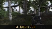 2643517.jpg