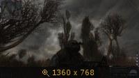 2661931.jpg