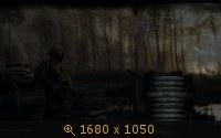 2739312.jpg