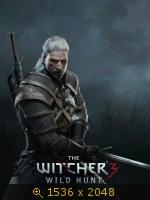 The Witcher 3: Wild Hunt   2880512