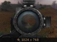 303243.jpg
